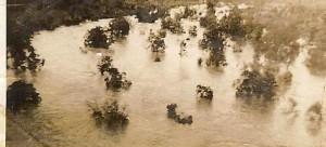 Alice Springs flooded river